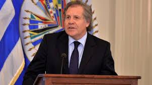 Secretario de la OEA admite CIDH incurrió en error con RD