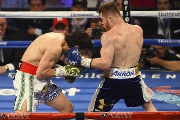 Canelo, dibujó ring, ganó todos los asaltos