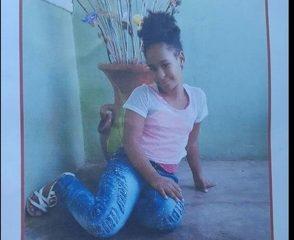 Mecánico habría sido autor de violación y muerte niña de 11 años en Higüey