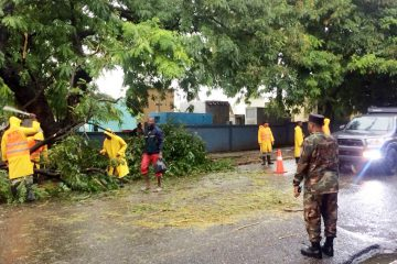 Brigadas del Ministerio de Obras Públicas despeja las vías afectadas por las lluvias de onda tropical Beryl
