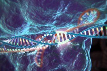 Científicos chinos modifican genes para resistir a la peste porcina