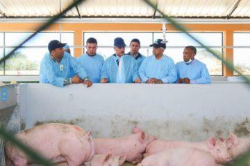 Presidente Medina entrega granja prometida a porcicultores de Cumayasa