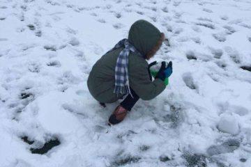 Suspenden docencia hoy lunes por la nieve en NYC
