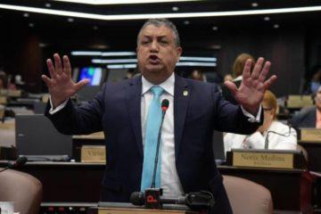 """La propuesta del grupo de Leonel Fernández """"es un caramelo envenenado"""", dicen diputados"""