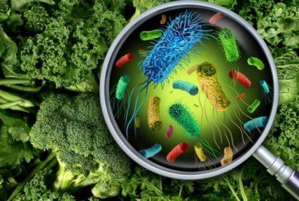 Listeria: por qué es tan peligrosa la infección por esta bacteria y cómo se puede evitar