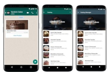 Catálogos de Whatsapp, la nueva función para ver y comprar productos